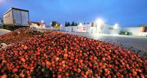 Agricultura Francia y España