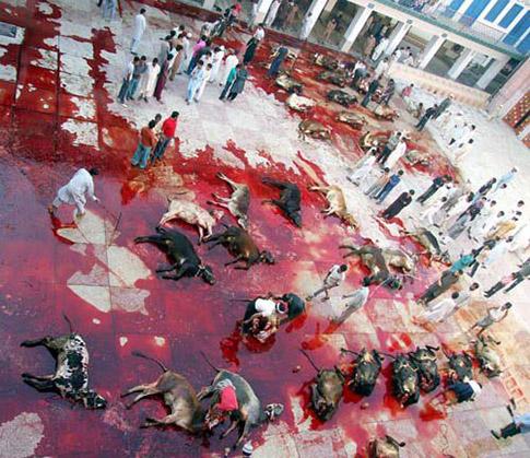 Fiesta del Cordero musulmanes