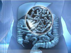 Los probioticos y el efecto positivo que ejercen dentro del organismo. El beneficio de los probioticos en el cuerpo humano