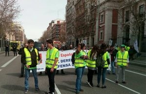 Falange Española de las JONS en la manifestación provida
