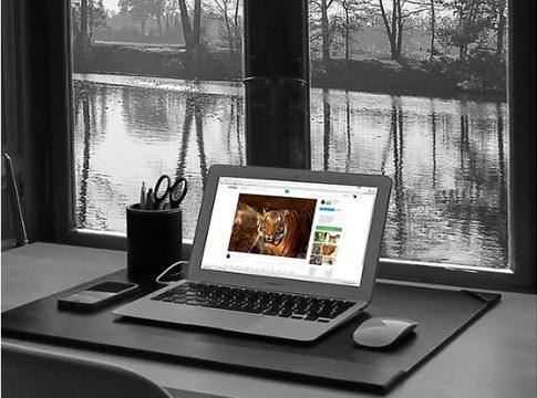 Mesa de estudio con un ordenador y vistas al jardín